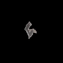 Zierleistenklammer Trittbrett, 18mm, Käfer, 113853559A